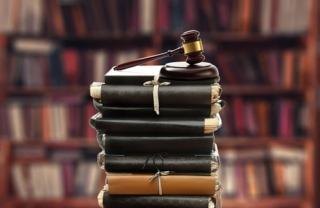 Maestría en Derecho de Amparo en Linea