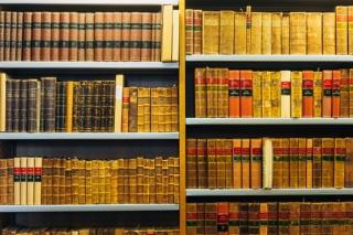 maestria en derecho penal, Derecho de amparo, Juicios orales